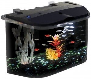 5rounded5gallonaquariumkit