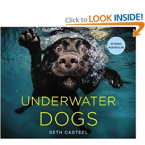 underwaterdogsbook