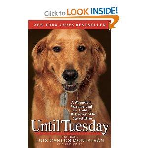 untiltuesdaymenselfhelpbook