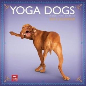 yogadogs